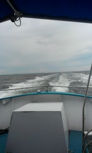 07-19-2014 Fire Island - Water Taxi